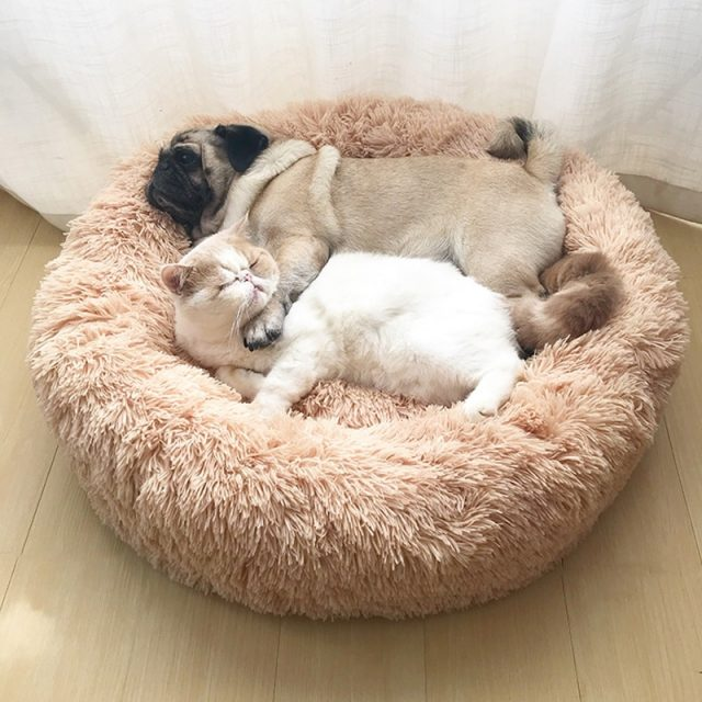 Super Soft Dog Bed House Dog Bed Plush Pet Product Accessories Cat Dogs Beds For Labradors Large Cats Mat
